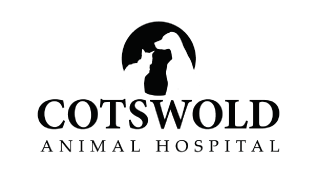 Cotswold Animal Hospital in Charlotte NC